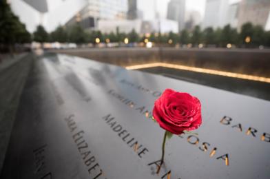 9/11 Family Novel