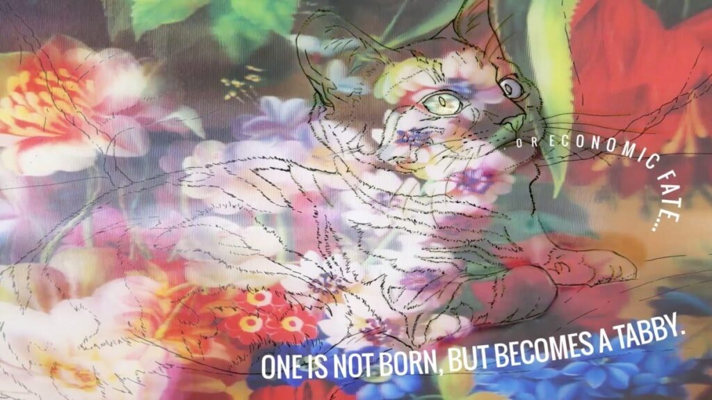 "colorful image with a line drawing of a cat superimposed and the words ""one is not born but becomes a tabby"" on it"